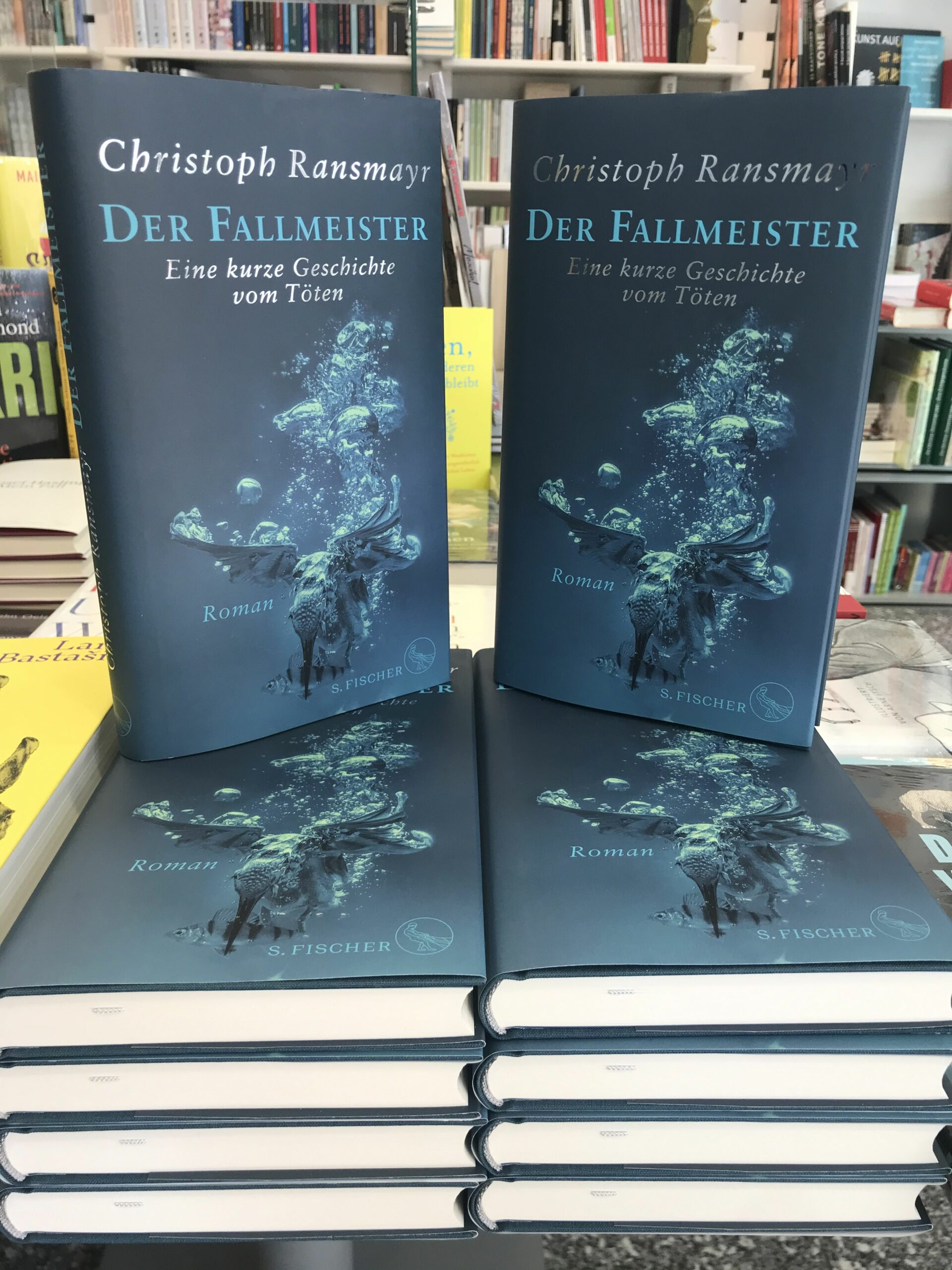 📰Der Fallmeister – Christoph Ransmayr📚
